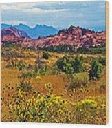 Kolob Terrace Road In Zion National Park-utah Wood Print