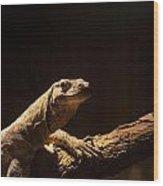 Komodo Dragon Poising Wood Print