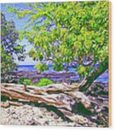 Kona Coast Wood Print