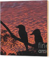 Kookaburras At Sunset Wood Print