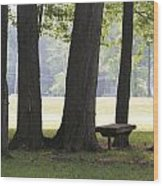 Ksu Ashtabula Campus Park Wood Print
