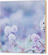 Kula White Wood Print