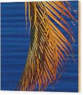 Kundalini Wood Print
