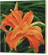 Kwanso Lily Wood Print