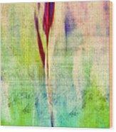 L Epi - S14at01 Wood Print