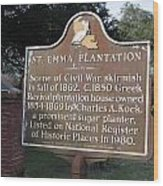 La-034 St. Emma Plantation Wood Print