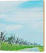 La 57 Marsh Drive Wood Print