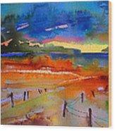 La Camargue La Nuit Wood Print