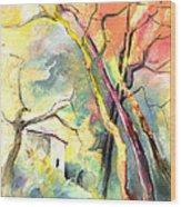 La Casita 03 Wood Print
