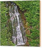 La Chute In Forillon Np-qc Wood Print