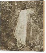 La Coca Falls El Yunque National Rainforest Puerto Rico Print Vintage Wood Print