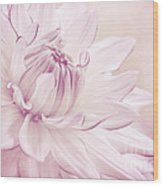La Dahlia Wood Print by Angela Doelling AD DESIGN Photo and PhotoArt