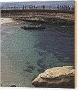 La Jolla Cove Wood Print