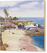 La Jolla Cove Wood Print by Mary Helmreich