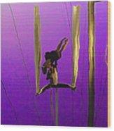 La Loupiote In Lavender Wood Print