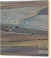 La Mancha Landscape - Spain Series-ocho Wood Print