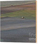 La Mancha Landscape - Spain Series-siete Wood Print