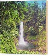 La Paz Waterfall Costa Rica Wood Print