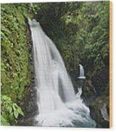 La Paz Waterfalls In Rainforest Costa Wood Print