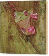 La Petite Grenouille Verte Wood Print