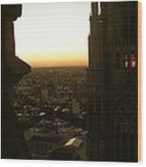 La Plata - Cathedral Wood Print