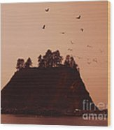 La Push Silhouette With Birds Wood Print by Kym Backland