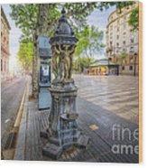 La Rambla Fountain  Wood Print