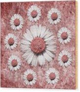 La Ronde Des Marguerites - Pink 02 Wood Print
