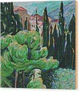 La Turbie Hills Above Monaco Wood Print