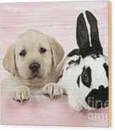 Lab Puppy And Bunny Wood Print