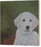 Labrador Wood Print