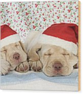 Labrador Puppy Dogs Wearing Christmas Wood Print