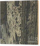 Labyrinth Dimensions 666 Wood Print