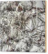 Labyrinth Of Ice Wood Print