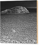 Lac Assal In Djibouti Wood Print