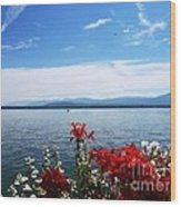 Lac Leman - Switzerland Wood Print
