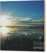 Lacassine Afternoon Sparkle Wood Print