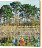 Lacassine Nwr Wood Print