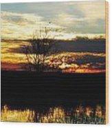 Lacassine Painted Sunset Wood Print