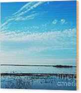 Lacassine Pool Louisiana Afternoon Wood Print
