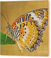 Lacewing Butterfly Cethosia Sp Wood Print