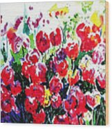 Laconner Tulips Wood Print