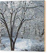 Lacy Snowfall Wood Print