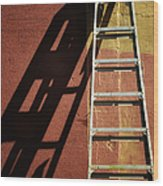Ladder And Shadow On The Wall Wood Print