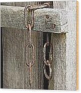 Ladder Chain Color Wood Print