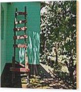 Ladder Wood Print