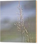 Lades View Meadow Wood Print