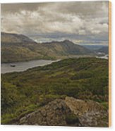 Ladies View Lakes Of Killarney Ireland Wood Print by Dick Wood