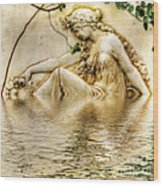 Lady Bathing 2 Wood Print