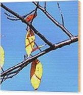 Lady Bug And Leaves Wood Print